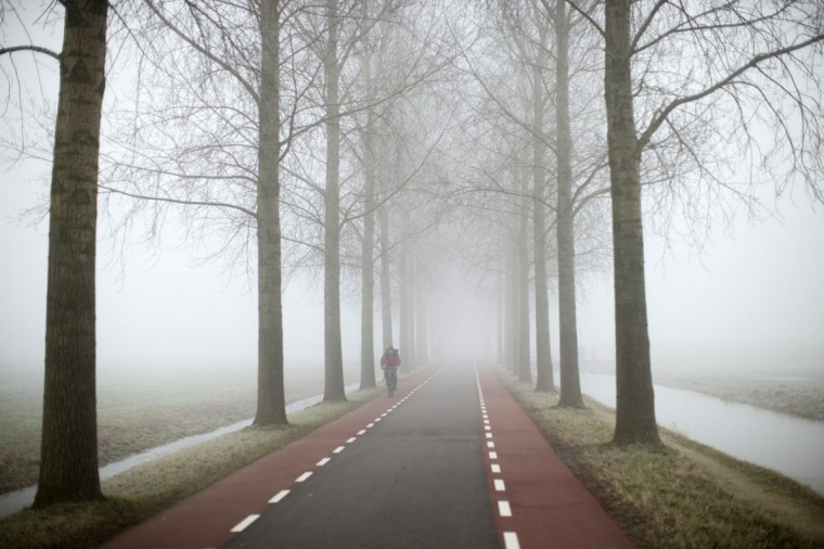 A cyclist rides on a foggy day in Amstelveen, near Amsterdam, Netherlands, Friday, Jan. 23, 2015, where temperatures dropped to a few degrees below freezing point. (AP Photo/Peter Dejong)
