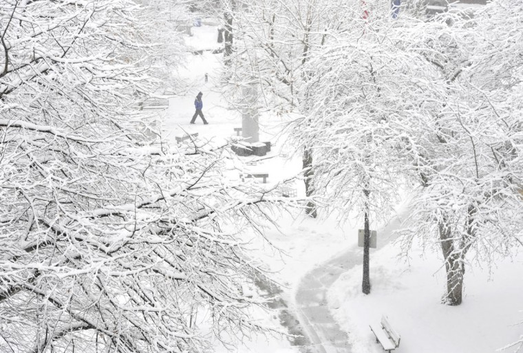 A pedestrian passes through Johnstown Central Park, in Johnstown, Pa., Monday, Jan. 26, 2015. Gov. Tom Wolf declared a state of emergency Monday as a noríeaster expected to dump snow across the state approached. (AP Photo/The Tribune-Democrat, Todd Berkey)