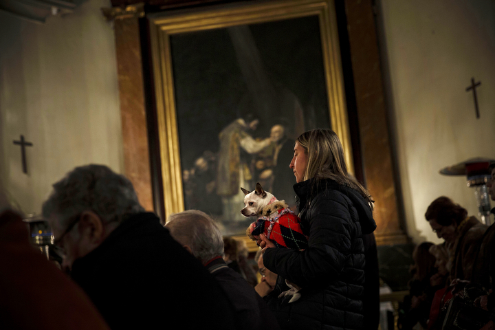 A woman prays holding her dog, as worshipers attend a mass in the Saint Anton church in Madrid, Spain. It is the animal patron saints day in which thousands of people all over Spain bring their pets to churches to be blessed. (Daniel Ochoa de Olza/AP Photo)
