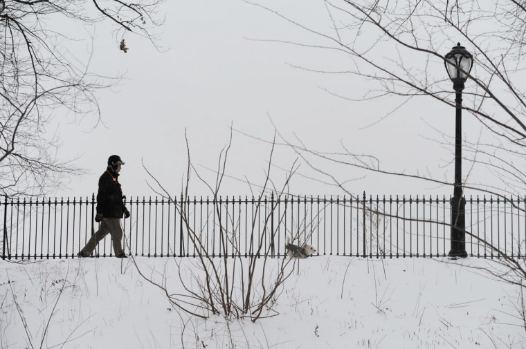 A man walks a dog in Central Park after a snowstorm hit New York January 27, 2015. (STAN HONDA/AFP/Getty Images)