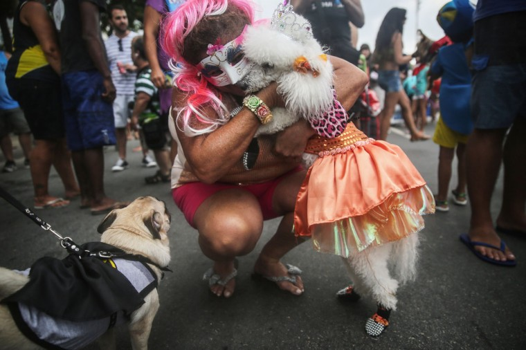 A costumed dog is hugged by its owner during a 'bloco' street parade honoring pets, specifically dogs, during pre-Carnival festivities on February 1, 2015 in Rio de Janeiro, Brazil. Carnival officially starts February 13 but pre-Carnival festivities are already underway in Brazil with around 500 street parades honoring a massive variety of themes and subjects. (Photo by Mario Tama/Getty Images)