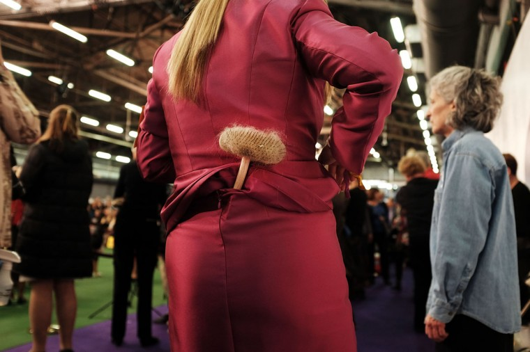 A woman carries her dog brush in her skirt at the Westminster Kennel Club Dog Show on February 17, 2015 in New York City. (Photo by Spencer Platt/Getty Images)