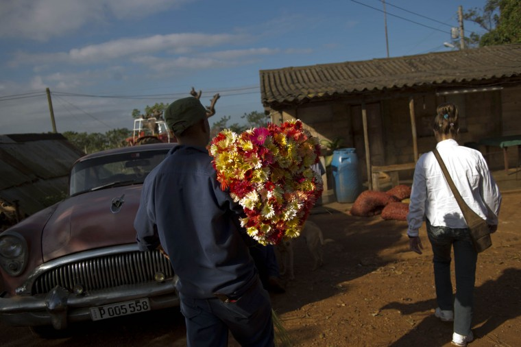 In this Thursday, Jan. 29, 2015 photo, a supplier carries a bunch of fresh cut flowers for the self-employed flower vendor Yaima Gonzalez Matos, 33, at a farm in San Antonio de los Banos, Cuba. She says she works only two days a week because there isnít enough demand to support more business. But often those days last 12 hours, and she gets home long after her mother has bathed her son and put him to bed. (AP Photo/Ramon Espinosa)
