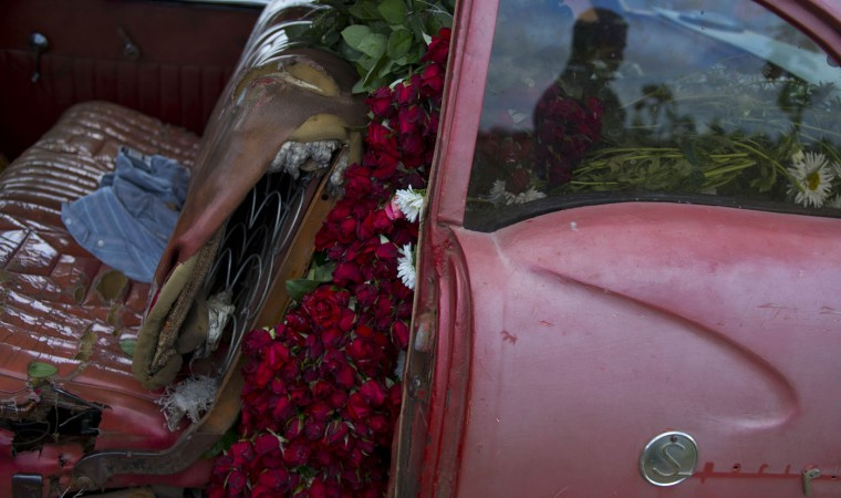 n this Thursday, Jan. 29, 2015 photo, the backseat of a rented 1957 Buick is packed to the brim with flowers, to be transported to Havana from San Antonio de los Banos, Cuba. Every Monday and Thursday morning, Yaima Gonzalez Matos leaves her home to visit a dozen farmers who sell her sunflowers, roses, lilies and other blooms. She loads the flowers into the rented American classic and delievers to customers in the capital. (AP Photo/Ramon Espinosa)