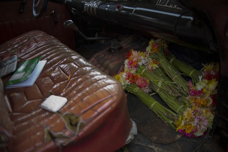 In this Thursday, Jan. 29, 2015 photo, flower bunches occupy the floorboard of a 1957 Buick, rented by flower vendor Yaima Gonzalez Matos, for her bi-weekly rounds to farmers who sell her the blooms, in San Antonio de los Banos, Cuba. Gonzalez joined the ranks of Cuba's small class of entrepreneurs three years ago when she lost her job in human resources at a state-owned enterprise. To support herself and her son, now 11, she followed the example of friends working in the island's new private flower business. (AP Photo/Ramon Espinosa)