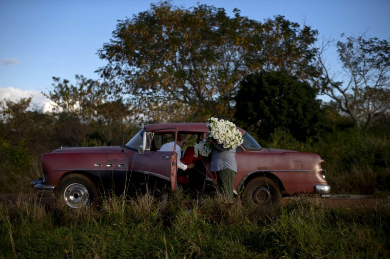 In this Thursday, Jan. 29, 2015 photo, private flower vendor Yaima Gonzalez Matos, 33, loads a bunch of daisies into the backseat of a rented 1957 Buick, with the help of driver Lazaro, in San Antonio de los Banos, Cuba. Gonzalez dreams of one day having a business big enough to let her buy a truck. For now she pays Lazaro about $20 a day including gas to transport the flowers to the capital. (AP Photo/Ramon Espinosa)