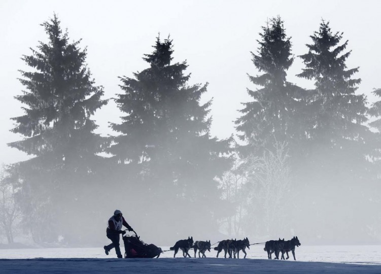 A musher competes with his dog-sled during the Trans-Thuringia race, one of the biggest dog-sled races with purebred dogs in central Europe, in the Thuringian Forest near Fehrenbach, central Germany. Around 500 sled dogs and their mushers covered a distance of nearly 280 kilometers in seven runs. AP Photo/Jens Meyer