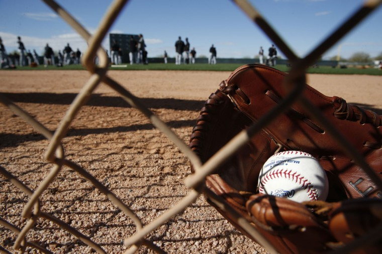 A ball and glove are seen during a Chicago White Sox spring training baseball workout Tuesday, Feb. 24, 2015, in Phoenix. (AP Photo/John Locher)