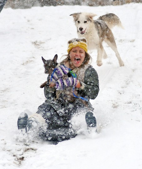 KK Anderson rides a sled with a dog named Dax at Avent Park, Wednesday, Feb. 25, 2015, in Oxford, Miss. From the Deep South to the Mid-Atlantic, another winter storm was expected to bring more snow and ice Wednesday to many areas that were hit hard just last week. (AP Photo/The Oxford Eagle, Bruce Newman)