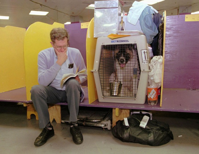 George Seibert, of Dundalk, Edward Lipnickas Jr's uncle, keeps company with Tundra, in cage, at Madison Square Garden in New York, while waiting to compete in the Westminster Dog Show on February 12, 1996. (Kenneth K. Lam/Baltimore Sun)