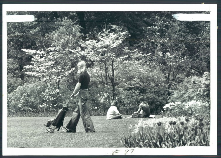 Guilford's Sherwood Gardens, May 1, 1977. Photo by Lloyd Pearson, Baltimore Sun