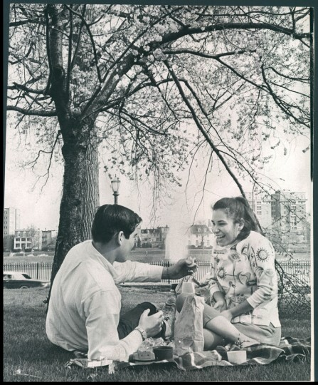 April 13, 1964: In spring a young man's fancy turns to a picnic on the grass and Harold Simon, 17, chose a plot of grass by the Druid Hill Reservoir as the perfect spot to share a sandwich with Arlyn Levy, 16, and enjoy a perfect day under the cherry blossoms. (William L. LaForce, Jr., Baltimore Sun)
