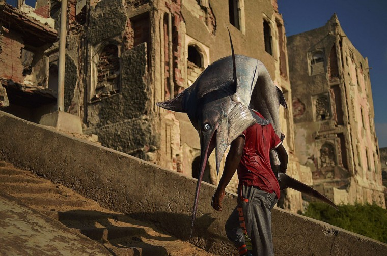 A man carrying a sailfish walks through Hamarweyne district in South Mogadishu on March 25, 2015. (AFP Photo/P /carl )