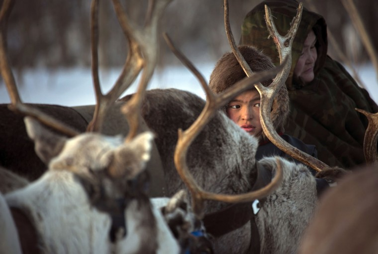 In this photo taken on Saturday, March 14, 2015, a Nenets boy sits on a sleigh as he attends the Reindeer Herder's Day holiday in the city of Nadym, in Yamal-Nenets Region, 2500 kilometers (about 1553 miles) northeast of Moscow, Russia. For the indigenous nomadic Nenets people, the Reindeer Herderís Day offers a chance to show their prowess in wrestling, high jumps and other traditional local sports, but, above all, reindeer races. (AP Photo/Dmitry Lovetsky)