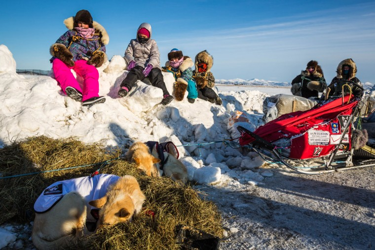 Children watch Aliy Zirkle tend to her dogs shortly after she arrived at the Unalakleet checkpoint in the Iditarod on Sunday, March 15, 2015. Aaron Burmeister, 39, was the first musher to reach Unalakleet, the first checkpoint on the Bering Sea coast. (AP Photo/Alaska Dispatch News, Loren Holmes)