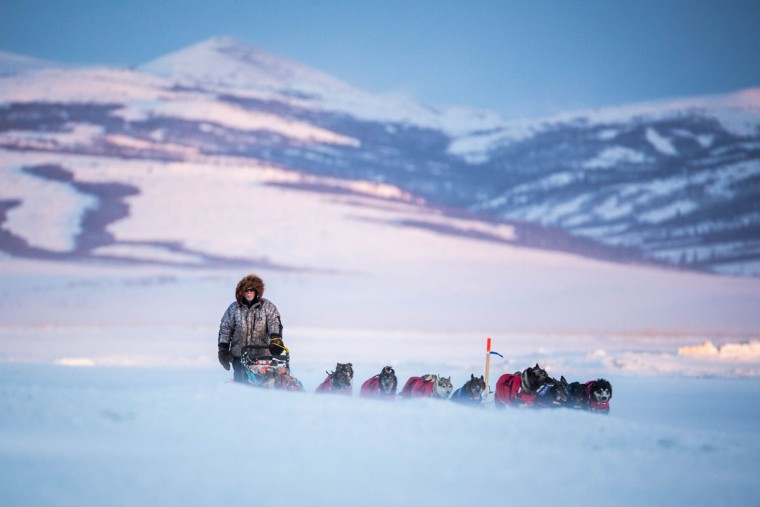 Jeff King arrives in Unalakleet in the Iditarod on Sunday, March 15, 2015. Aaron Burmeister, 39, was the first musher to reach Unalakleet, the first checkpoint on the Bering Sea coast. (AP Photo/Alaska Dispatch News, Loren Holmes)