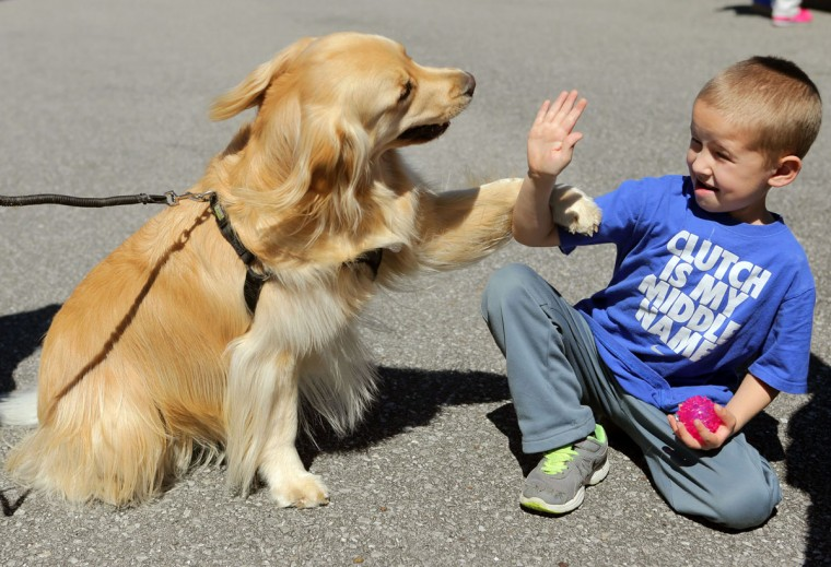 Jackson Parish, 5, high-fives his new friend Josie during DogFest at Frank Brown Park on Saturday, March 7, 2015, in Panama City Beach, Fla. (AP Photos/The News Herald, Heather Leiphart)