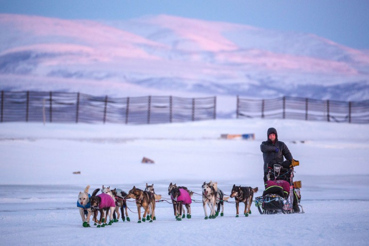 Aaron Burmeister leaves the Unalakleet checkpoint in the Iditarod on Sunday, March 15, 2015. Burmeister was first to arrive and second to leave, after Dallas Seavey who stopped only 5 minutes. (AP Photo/Alaska Dispatch News, Loren Holmes)