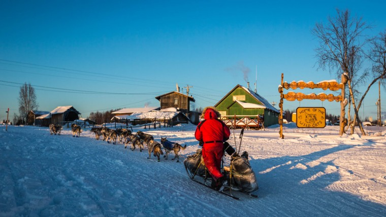 Nathan Schroeder mushes into Kaltag, Alaska, during the Iditarod Trail Sled Dog Race, Sunday, March 15, 2015. (AP Photo/Alaska Dispatch News, Loren Holmes)
