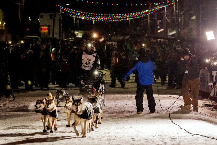 Dallas Seavey mushes down Nome, Alaska to win his third Iditarod Trail Sled Dog Race on Wednesday, March 18, 2015. Seavey won his third Iditarod in the last four years, beating his father, Mitch, to the finish line after racing 1,000 miles across Alaska. (AP Photo/Alaska Dispatch News, Loren Holmes )