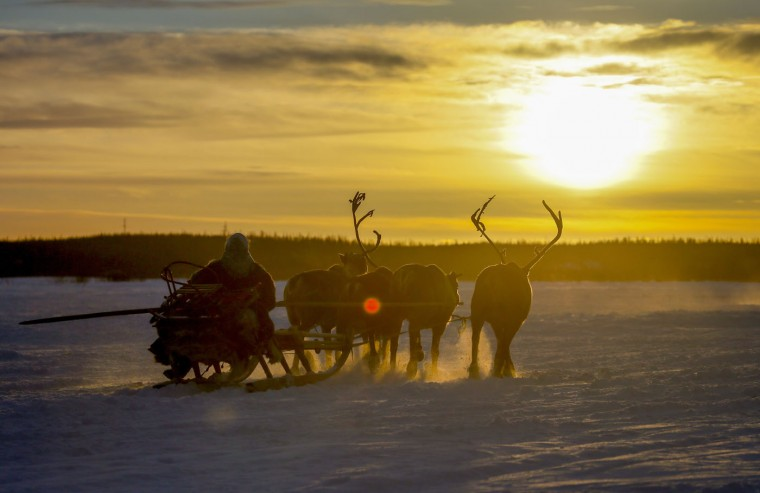 In this photo taken on Saturday, March 14, 2015, a Nenets woman rides in a reindeer sleigh after the Reindeer Herder's Day holiday in the city of Nadym, in Yamal-Nenets Region, 2500 km (about 1553 miles) northeast of Moscow, Russia. The Reindeer Herder's Day is celebrated annually in Russiaís Yamal-Nenets region in the Arctic and for the Nenets people, it offers a chance to show their prowess in wrestling, high jumps and other traditional sports, but, above all, reindeer races. (AP Photo/Dmitry Lovetsky)