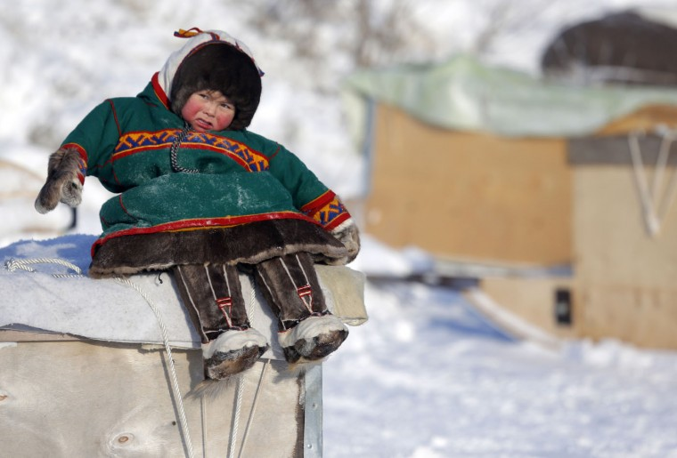 In this photo taken on Sunday, March 15, 2015,a Nenets boy sits on a big sleigh at the Reindeer Herder's Day in the city of Nadym, in Yamal-Nenets Region, 2500 km (about 1553 miles) northeast of Moscow, Russia. The Reindeer Herder's Day is celebrated annually in Russiaís Yamal-Nenets region in the Arctic and for the Nenets people, it offers a chance to show their prowess in wrestling, high jumps and other traditional sports, but, above all, reindeer races. (AP Photo/Dmitry Lovetsky)