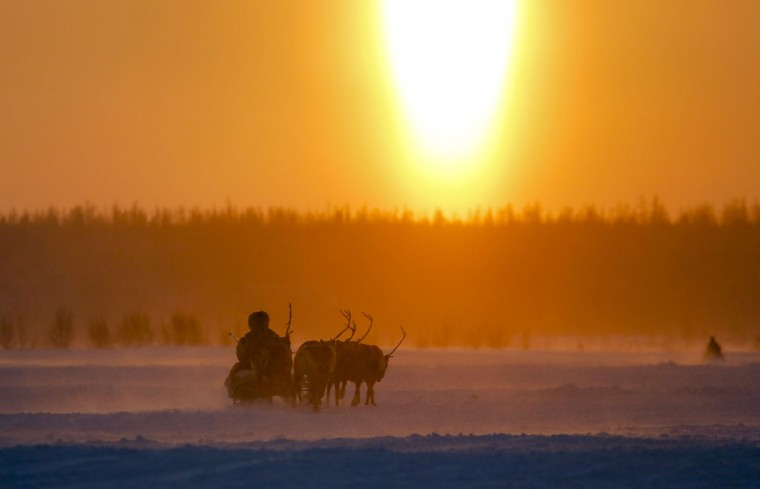 In this photo taken on Sunday, March 15, 2015, a Nenets man rides in a reindeer sled at sunset after the Reindeer Herder's Day in the city of Nadym, in Yamal-Nenets Region, 2500 kilometers (about 1553 miles) northeast of Moscow, Russia. Some participants at the Reindeer Herder's Day travel hundreds of kilometers across the frozen tundra to attend the competition in the region in northern Siberia, more than half of the territory of which lies above the Arctic Circle. (AP Photo/Dmitry Lovetsky)
