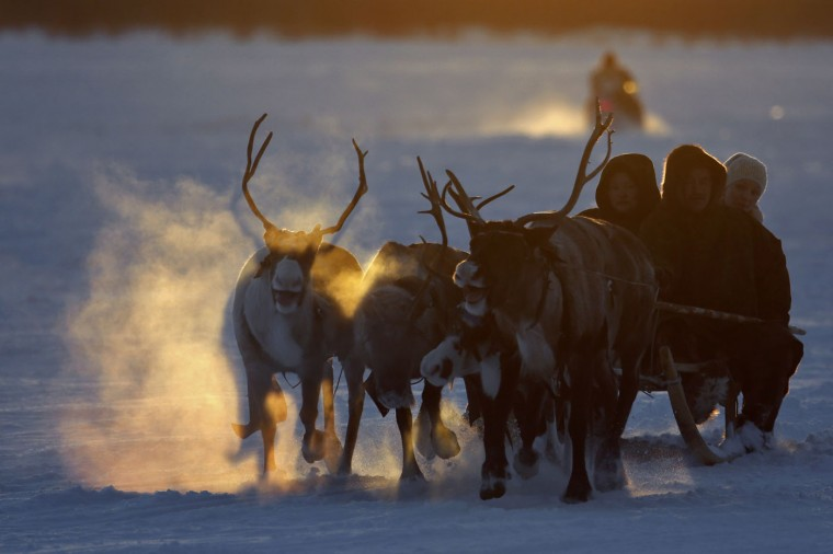 In this photo taken on Saturday, March 14, 2015, Nenets people ride in a reindeer sleigh during the Reindeer Herder's Day holiday in the city of Nadym, in Yamal-Nenets Region, 2500 kilometers (about 1553 miles) northeast of Moscow, Russia. Some participants at the Reindeer Herder's Day travel hundreds of kilometers across the frozen tundra to attend the competition in the region in northern Siberia, more than half of the territory of which lies above the Arctic Circle. (AP Photo/Dmitry Lovetsky)