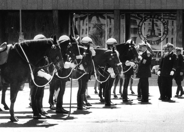 According to The Sun, the unit started in 1888 and is one of the oldest continuously operated mounted police divisions in the United States. (Richard Childress/Baltimore Sun/1979)