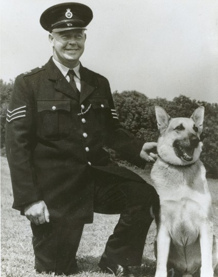 Terrance Patrick Cahill helped grown the city's police dog program in 1959. (Baltimore Sun archives)
