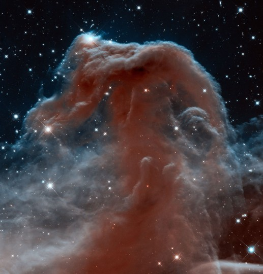 Barnard 33, the Horsehead Nebula, in the constellation of Orion. This Hubble image shows the region in infrared light. (NASA/ESA/ Hubble Heritage Team via AP)