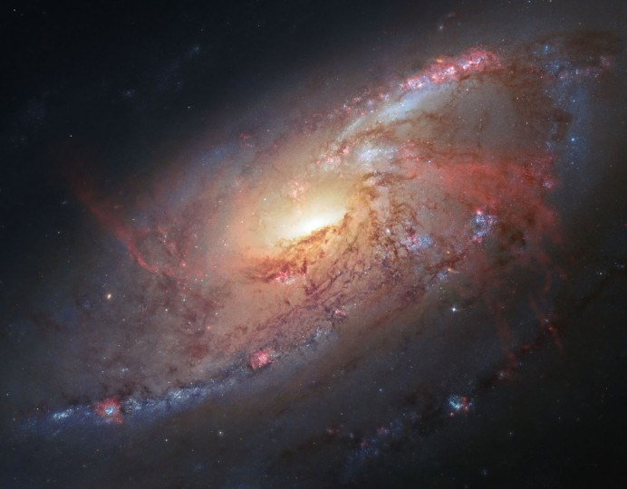 Amateur astronomer Robert Gendler combined Hubble data with his own observations to produce this color image of M106, a spiral galaxy. (NASA/ ESA/ Hubble Heritage Team, R. Gendler via AP)