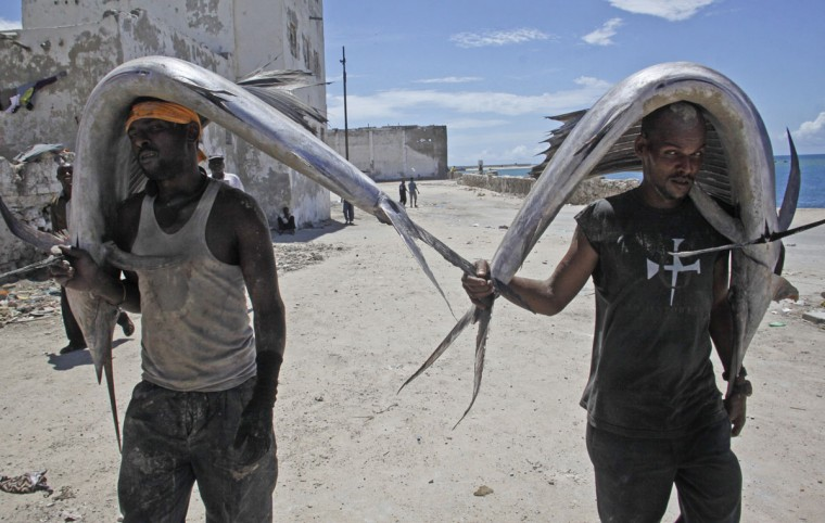 Somali men carry swordfish from the sea to a market in the capital Mogadishu, Somalia Thursday, April 23, 2015. (AP Photo/Farah Abdi Warsameh)