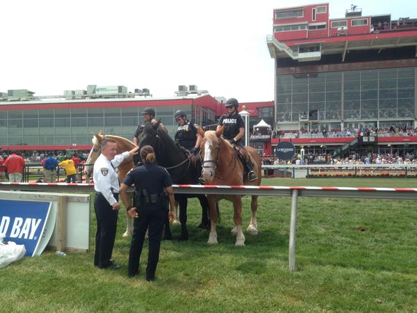 Deputy Commissioner Kevin Davis meets some of the Baltimore Police horses. (Colin Campbell/Baltimore Sun)