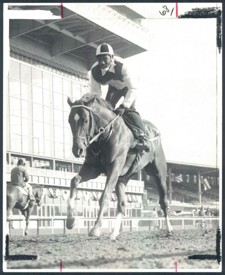 Secretariat wanted to run yesterday morning as exercise boy George Davis galloped him twice around the track at Pimlico. The Kentucky Derby winner is a 2-5 choice in the Preakness Stakes. (Baltimore Sun)
