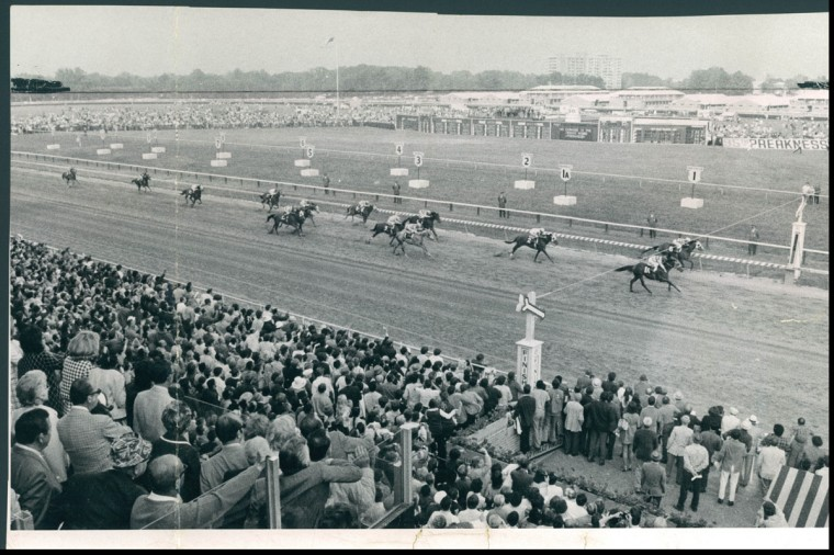 CLOSE FINISH--Overall view of entire Preakness field shows narrow margin of victory for Personality over My Dad George. The rest of the field is stretched far back behind the leaders. Silent Screen (No. 2) is alone in third place. (George Cook/Baltimore Sun, 1970)
