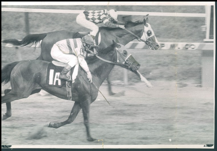 DOWN TO THE WIRE - Personality charges toward the finish line, holding of a bid from My Dad George, clsoing along the rail for second at Pimlico. (Clarence Garrett/Baltimore Sun, 1970)