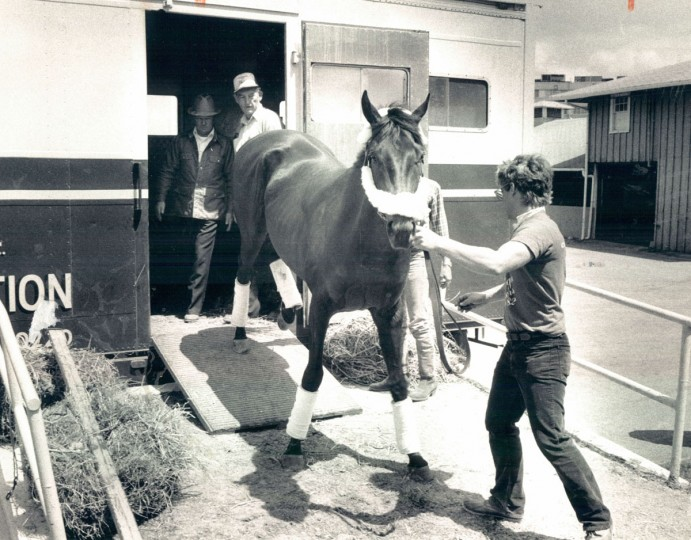 Kentucky Derby victor Swale is unloaded in the barn area at Pimlico Race Course. (Paul Hutchins/Balitmore Sun, 1984)