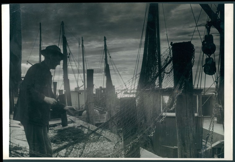 Trawlers in Ocean City MD sell flounder for 25 cents per pound, 1943.