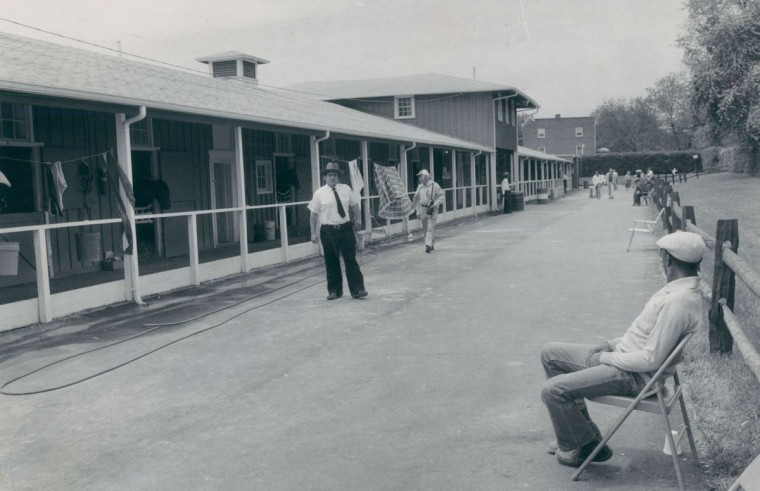 Quiet before the storm: Some entries for the second jewel of the Triple Crown peak out of the Preakenss Barn at noon on race day. (Joseph A. DiPaola/Baltimore Sun, 1980)
