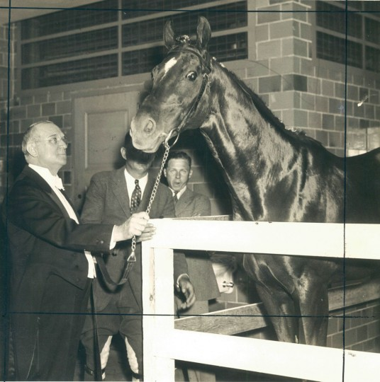 Dr. Freeland, the 1929 Preakness Winner. (Baltimore Sun archives)