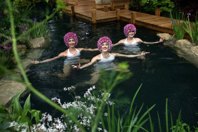 Synchronized swimmers perform in the 'M and G Garden 2015 - The Retreat' show garden, designed by Jo Thompson and sponsored by M and G Investments, on the press preview day of the Chelsea Flower Show on May 18, 2015 in London, England. The show, which has run annually since 1913 in the grounds of the Royal Hospital Chelsea, is open to the public from 19th to 23rd May and is expected to draw around 157,000 visitors. (Photo by Carl Court/Getty Images)