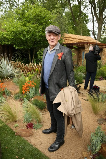Sir Ian McKellen visits the Sentebale 'Hope In Vunerability' Garden during the annual Chelsea Flower show at Royal Hospital Chelsea on May 18, 2015 in London, England.The Sentebale - Hope In Vulnerability Garden at RHS Chelsea Flower Show was designed by Matt Keightley and is inspired by the Mamohato Children's Centre in Lesotho. The Children's Centre is due to open later this year in Lesotho and will provide support to children living wth HIV (Photo by Chris Jackson/Getty Images for Sentebale)