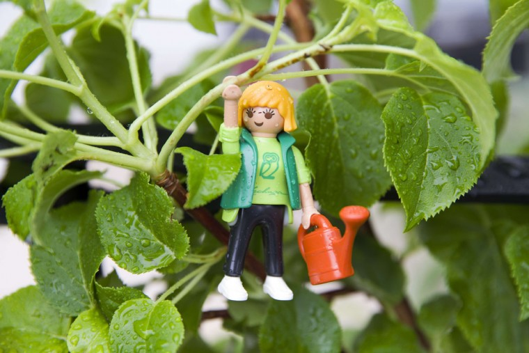 A Playmobil figure with a watering can is displayed during heavy rain at the 2015 Chelsea Flower Show in London on May 18, 2015. The Chelsea flower show, held annually in the grounds of the Royal Hospital Chelsea, will run this year from May 19-23. (AFP Photo/Justin Tallis)