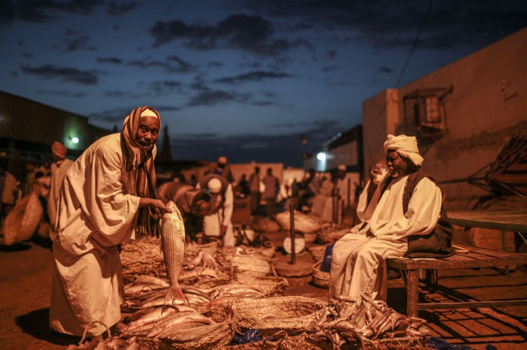 In this Thursday, April 16, 2015 photo, a man inspects a fish before buying it at Omdurman fish market, which operates before dawn until sunrise, in Khartoum, Sudan. (AP Photo/Mosa'ab Elshamy)