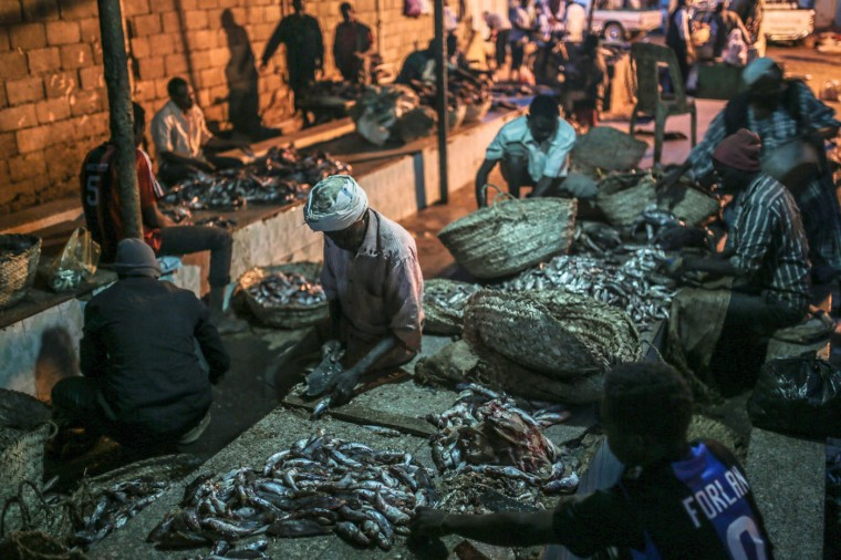 In this Thursday, April 16, 2015 photo, Sudanese fishermen clean fish before selling them at the Omdurman fish market, which operates from before dawn until sunrise, in Khartoum, Sudan. (AP Photo/Mosa'ab Elshamy)