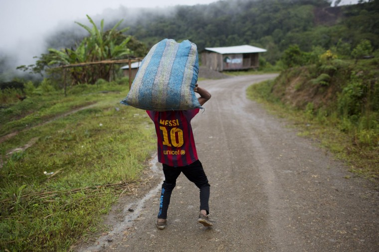 In this March 16, 2015 photo, Jhorlis Huallpa, 17, carries a bagful of tarps, to be used for drying coca leaves, in La Mar, province of Ayacucho, Peru. Hauling cocaine out of the valley is about the only way to earn decent cash in this economically depressed region where a farmhand earns less than $10 a day. Beyond extinguishing young lives, the practice has packed Peruís highland prisons with backpackers while their bosses evade incarceration. (AP Photo/Rodrigo Abd)
