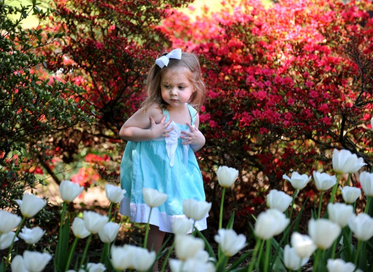 Three and one-half year-old Lexi Cunningham explores the gardens, which are located at 4100 St. Paul St. in the Guilford community of Baltimore City. (Algerina Perna/Baltimore Sun)