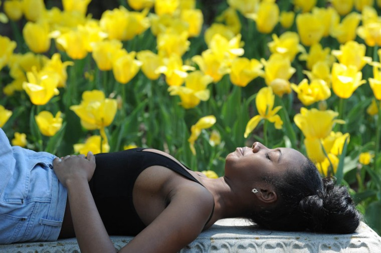 Narissa Boodoo, 19, a fine arts student Morgan State University from West Baltimore is pictured among the tulips at Sherwood Gardens. A freelance model, Boodoo poses for her friend and Morgan cinematography student, Nathia Williams, 22 (not pictured) from northeast Baltimore, and another friend, Adrian Houstone, 23, also a Morgan student and a freelance videographer. (Algerina Perna/Baltimore Sun)
