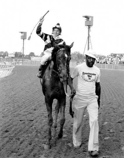 Ron Franklin astride the five and one-half length Preakness winner Spectacular Bid, is led by Herman (Mo) Hall. (Handout photo, 1979)
